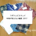 【福袋】ラポシェビスキュイ2017中身が見えない福袋ネタバレ